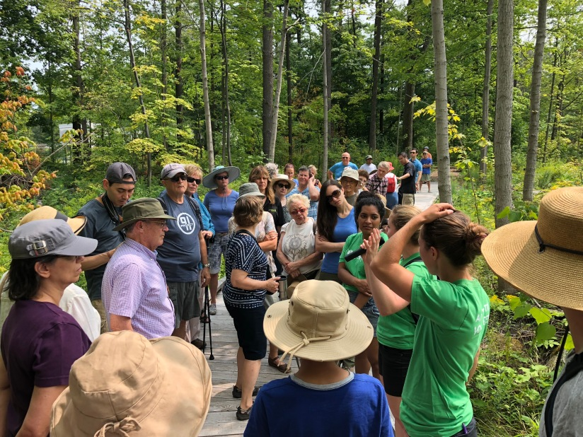 Guild Park Tree Walk and Opening ofBoardwalk